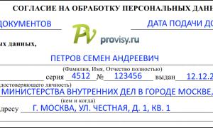 Согласие на обработку личных данных для визы