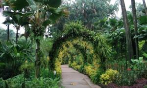 Сингапур: достопримечательности с фото и описанием, что стоит посмотреть, обзор интересных мест, туристическая карта страны
