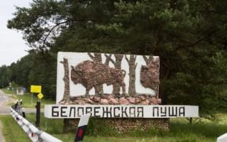 Беловежская пуща — Брест, Белоруссия