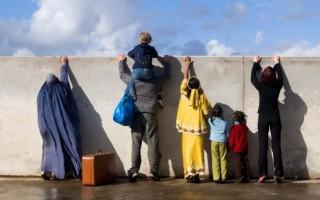 Причины миграции: статистика и последствия