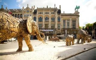 Антверпенский зоопарк — Бельгия
