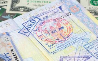 Что такое виза ран: особенности оформления